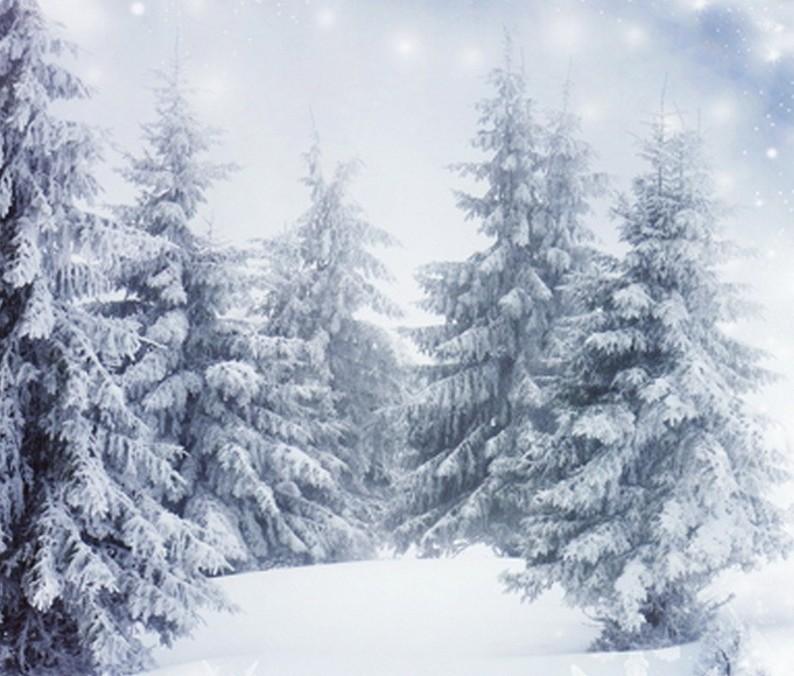 fotopozadi zima